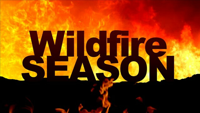 tips to breathe better air this wildfire season